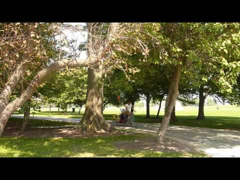 Erik's excursions: Uptown's Montrose Park