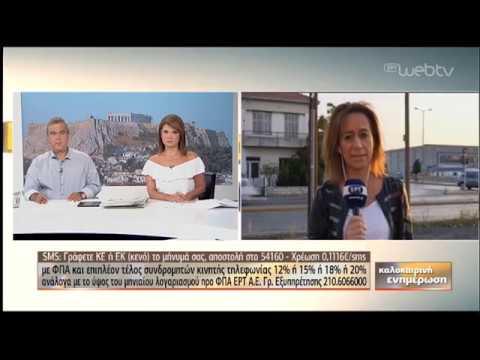 Πυρκαγιές στην Αργολίδα | 23/08/2019 | ΕΡΤ