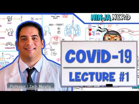 COVID-19   Coronavirus: Epidemiology, Pathophysiology, Diagnostics