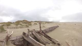 Camped at Nehalem Bay State Park on day 2 of being on the Oregon coast. Waited out the rain and got some great beach ...