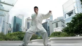 陳氏太極老架,新架,炮捶 Chen Style Tai Chi--Old form ,New form and Explosive form