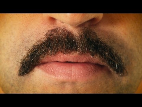 mustache - Offing a mustache is more complicated than you thought. Get the