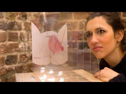 Viva la Vulva: Vagina-Museum gegen frauenverachtende  ...