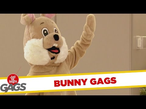 Troll Hài Hước 2015 - Easter Bunny Pranks - Best of Just For Laughs Gags