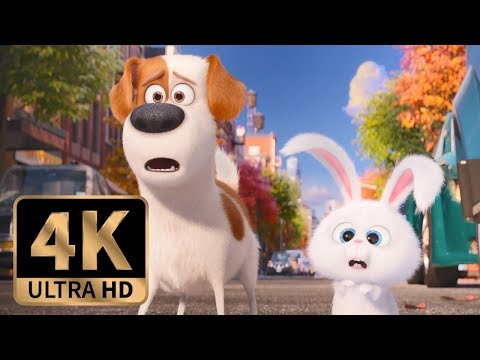 The Secret Life of Pets (2016) - Max and Snowball Join Forces (8/10)