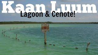 The Incredible Kaan Luum Lagoon near Tulum, Mexico!