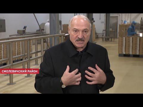 Лукашенко: Люди, возьмитесь за голову и успокойтесь! Не надо беситься от психоза!