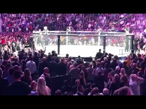 UFC 229 McGregor Khabib SCARY BRAWL, ALL ANGLES Crowd/Octagon