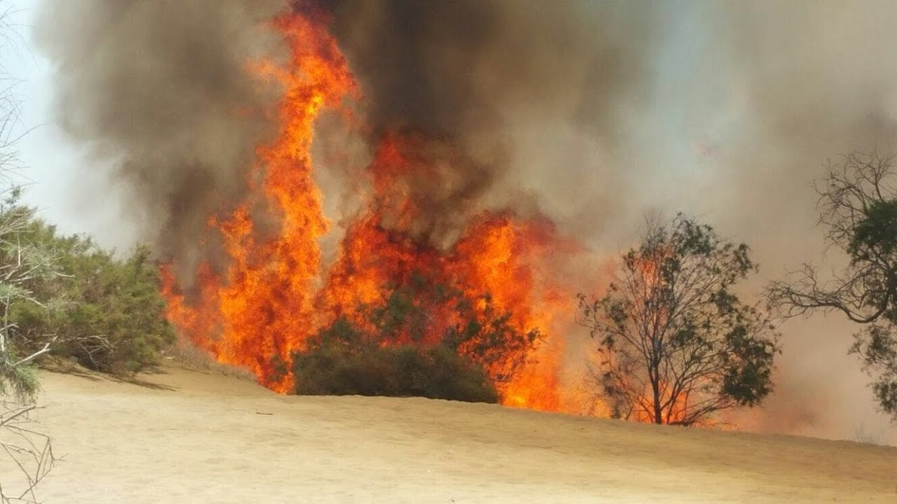 Liekit roihusivat Maspalomaksen dyyneill&auml;:<br /> Luonnonsuojelualueella syttynyt tulipalo sammutettiin nopeasti