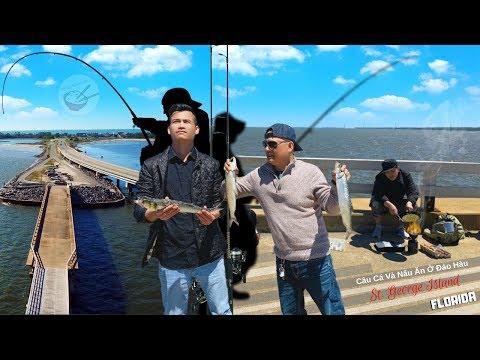 Câu Cá Và Nấu Ăn Ở Đảo Hàu ► bầm dập tại vịnh kho báu (Florida, Mỹ) - Thời lượng: 26:00.