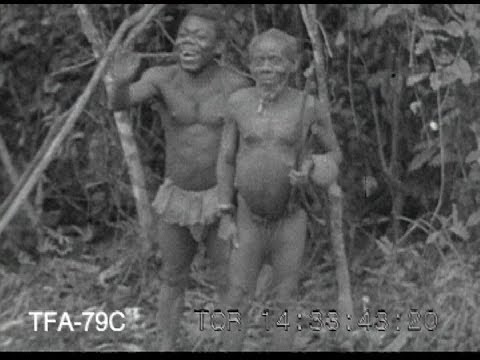 pygmy - A film about pygmies from the 1930s.To purchase a clean DVD or digital download of this film for personal home use or educational use contact us at questions...