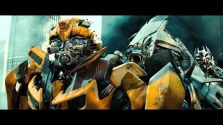 Bumblebee Tribute