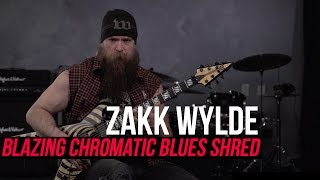 Nonton Zakk Wylde - Blazing Fast Chromatic Blues Shred Lick! Film Subtitle Indonesia Streaming Movie Download