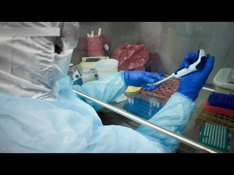 الشلولو والتوابل.. خرافات للقضاء على فيروس كورونا