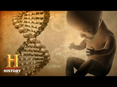 Was Human DNA Edited by Aliens?