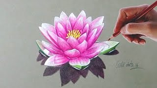 Drawing a water lily using simple colored pencils.Prismacolor Premier pencils used to draw this flower.Time lapse drawing.Time taken around 01.15 hours.Background Music -- You Like It by Vibe Tracks.If you like my video please don't forget to subscribe.Thanks for watching.