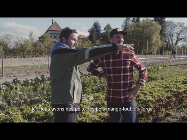 Coke & Meals | Farbian Zbinden | épisode 2