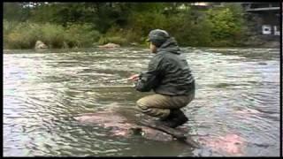 Рыбалка в Финляндии. Ловля спиннингом в  Хельсинки