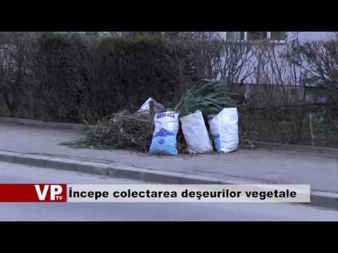 Începe colectarea deşeurilor vegetale