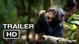 Nonton Chimpanzee Official Trailer  2  2012  Disney Nature Movie Hd Film Subtitle Indonesia Streaming Movie Download