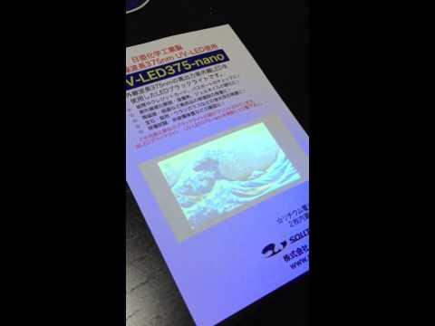 紫外線LEDでサンプルの絵を照らす