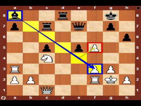 World Chess Championship 2010: Topalov vs. Anand – Game 12