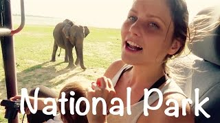 Udawalawe Sri Lanka  city images : Elefantenherde geht baden! | Nationalpark Udawalawe | Sri Lanka #VLOG57