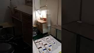 Компания АВАНТА на выставке Дентал-Экспо 30.10-01.11, СПБ