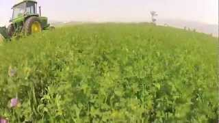 JD 4230 with 945 MoCo Swathing Alfalfa Video + Timelapse