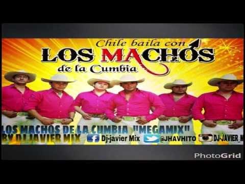 MEGAMIX LOS MACHOS DE LA CUMBIA 2014 BY DJ JAVIER MIX Alta calidad