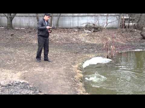 рыбалка на прудах тимирязевской академии