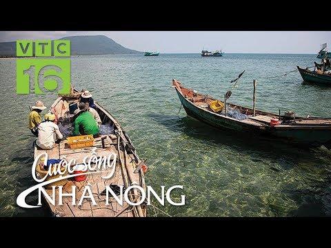 """Nhọc nhằn mùa săn """"lộc biển"""" bãi ngang xứ Thanh - CSNN 396 I VTC16 - Thời lượng: 30 phút."""