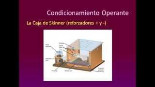 Umh0094 2013-14 Lec009  Unidad 3. Desarrollo Cognitivo. Parte 3