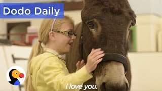 Therapy Donkey Helps Girl Speak | Best Animal Video Compilation | The Dodo Daily
