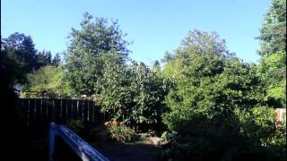 Cloudless day in our backyard