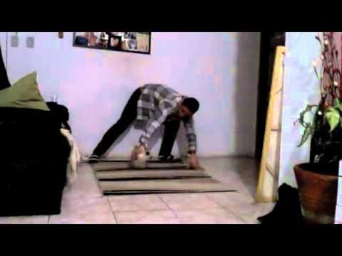 Mestre Calango & Gato Pastinha