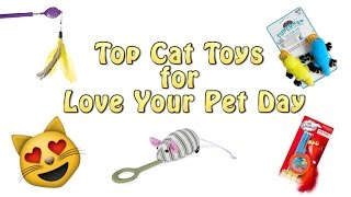 Top 5 Cat Toys For Love Your Pet Day