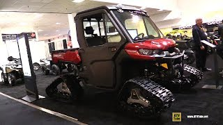 3. 2019 Can Am Defender XT Cab HD10 with Apache 360 Snow Trail Kit - Walkaround
