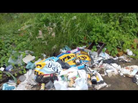 Lixão a céu aberto causa incômodo aos moradores do Setor Solar Betel, em Mineiros (GO