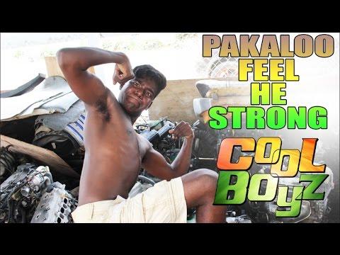 Pakaloo Feel He Strong - CoolBoyz - Caribbean Jokes