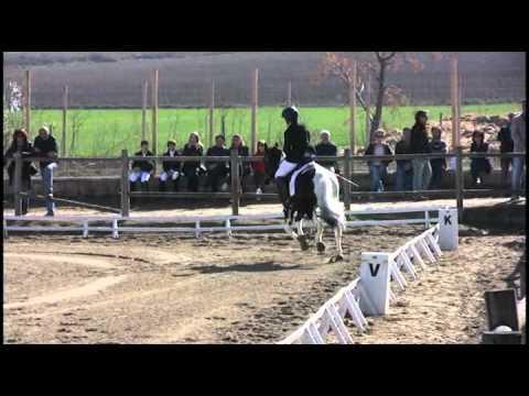 Doma Clasica Juegos Deportivos de Navarra (3)