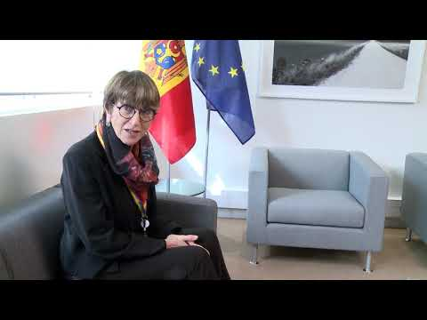 Igor Dodon a avut o întrevedere cu co-raportorii APCE pentru Republica Moldova