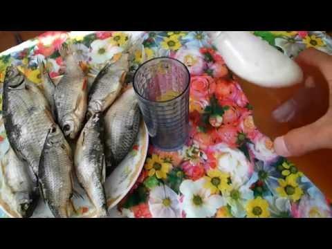 засолка рыбы на рыбалке в жару