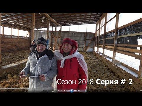 Колхозный Тест-Драйв 2018 | СЕРИЯ # 2 | Засватали девчонок. Братья Паршиковы.