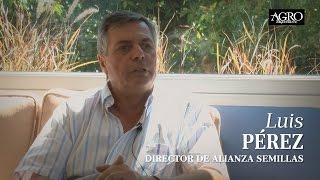 Luis Pérez - Director de Alianza Semillas