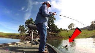 Video Sight Fishing Tips For Spawning Bass MP3, 3GP, MP4, WEBM, AVI, FLV Agustus 2018