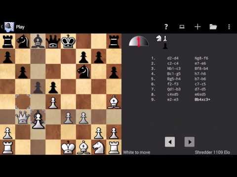 Video of Shredder Chess