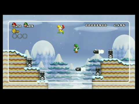 New Super Mario Bros Wii Super Skills