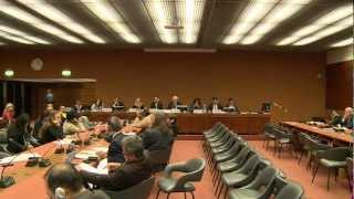 Forum on Business and Human Rights: Capacity building on the Guiding Principles - Part 2