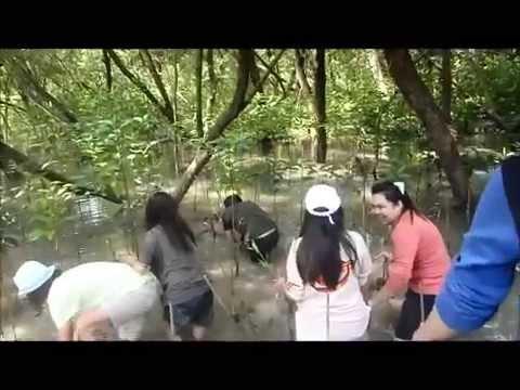 Service-Learning : Reforestation at KLONG-KONE Samutsongkram (19/10/2012)